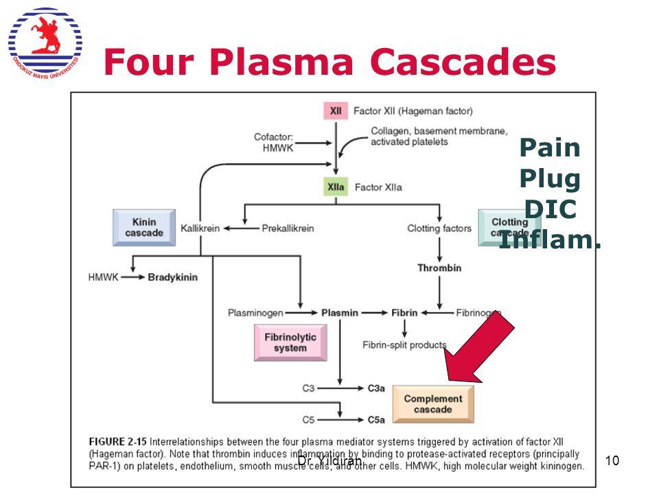Four Plasma Cascades Pain Plug DIC Inflam. Dr. Yıldıran