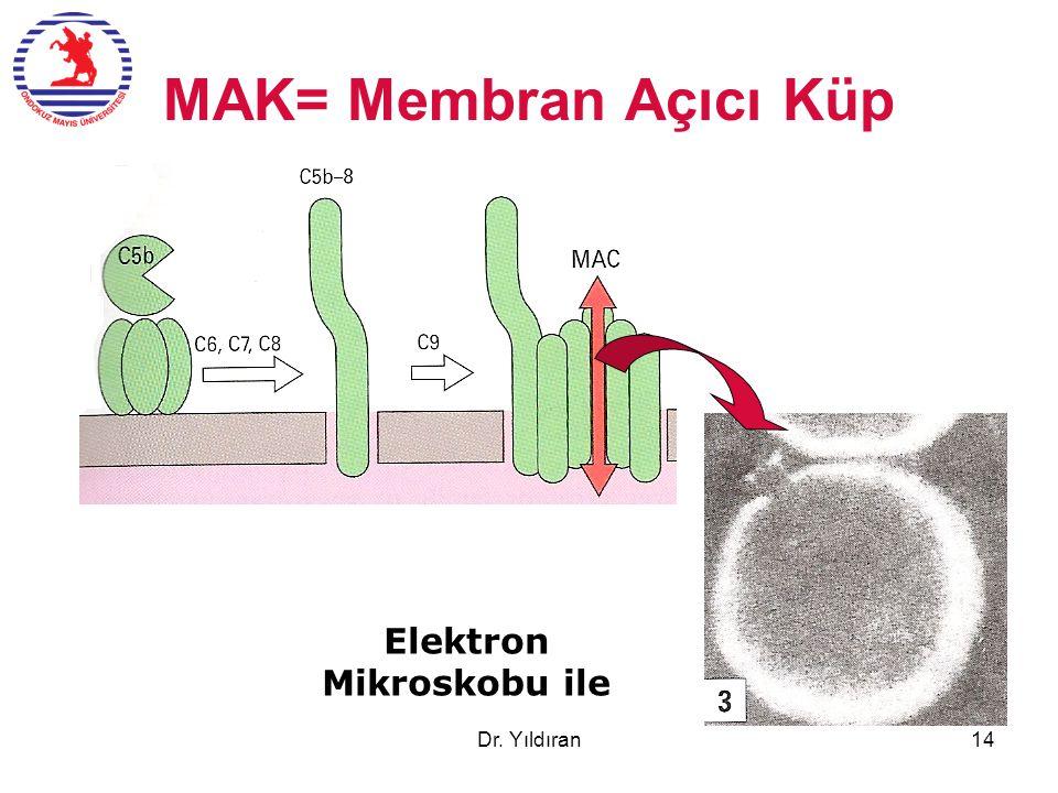 Elektron Mikroskobu ile