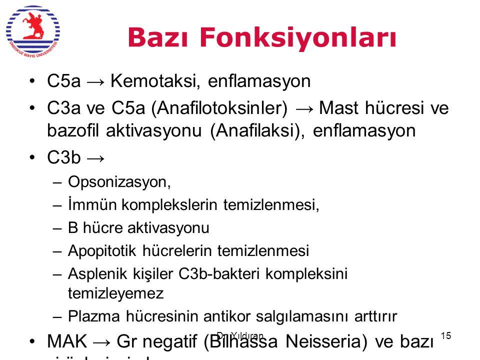 Bazı Fonksiyonları C5a → Kemotaksi, enflamasyon