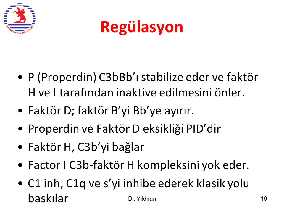 Regülasyon P (Properdin) C3bBb'ı stabilize eder ve faktör H ve I tarafından inaktive edilmesini önler.