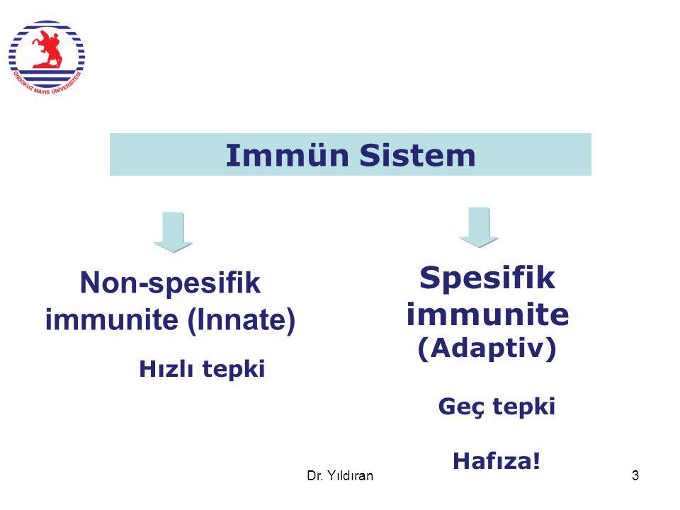 Spesifik immunite (Adaptiv) Non-spesifik immunite (Innate)