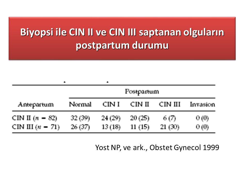 Biyopsi ile CIN II ve CIN III saptanan olguların postpartum durumu
