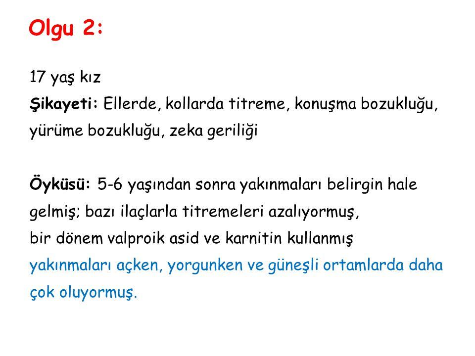 Olgu 2: