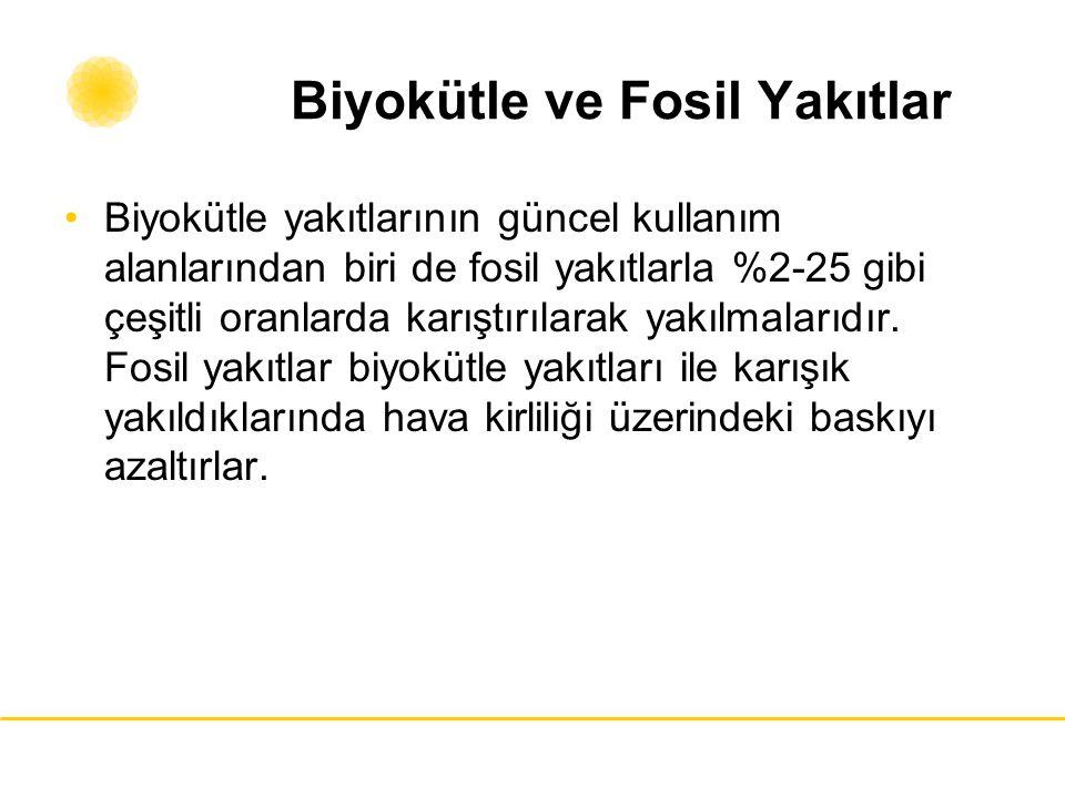 Biyokütle ve Fosil Yakıtlar