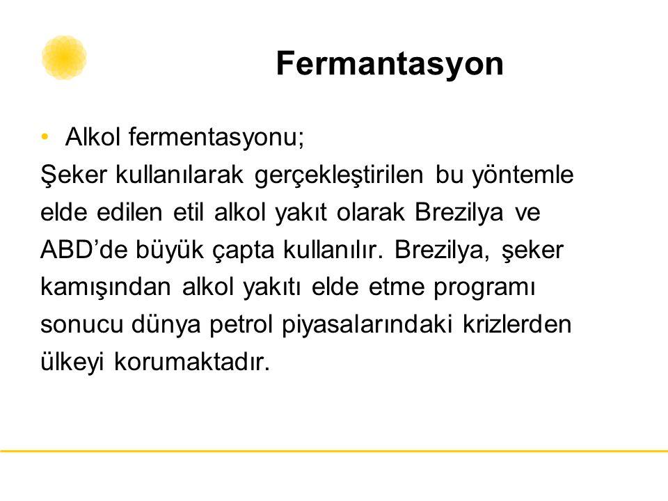 Fermantasyon Alkol fermentasyonu;