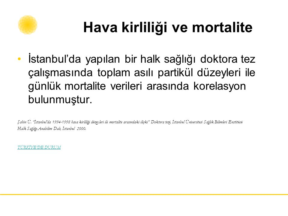 Hava kirliliği ve mortalite