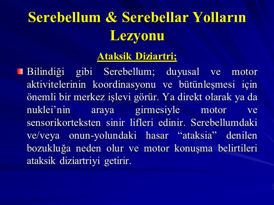 Serebellum & Serebellar Yolların Lezyonu