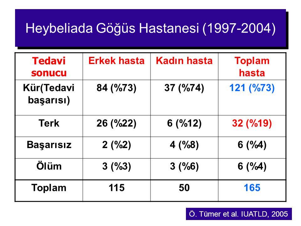 Heybeliada Göğüs Hastanesi (1997-2004)