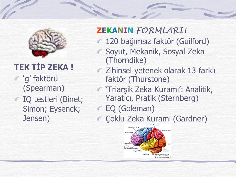 ZEKANIN FORMLARI! 120 bağımsız faktör (Guilford) Soyut, Mekanik, Sosyal Zeka (Thorndike) Zihinsel yetenek olarak 13 farklı faktör (Thurstone)
