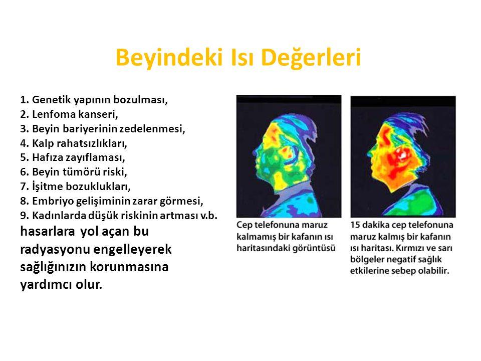 Beyindeki Isı Değerleri