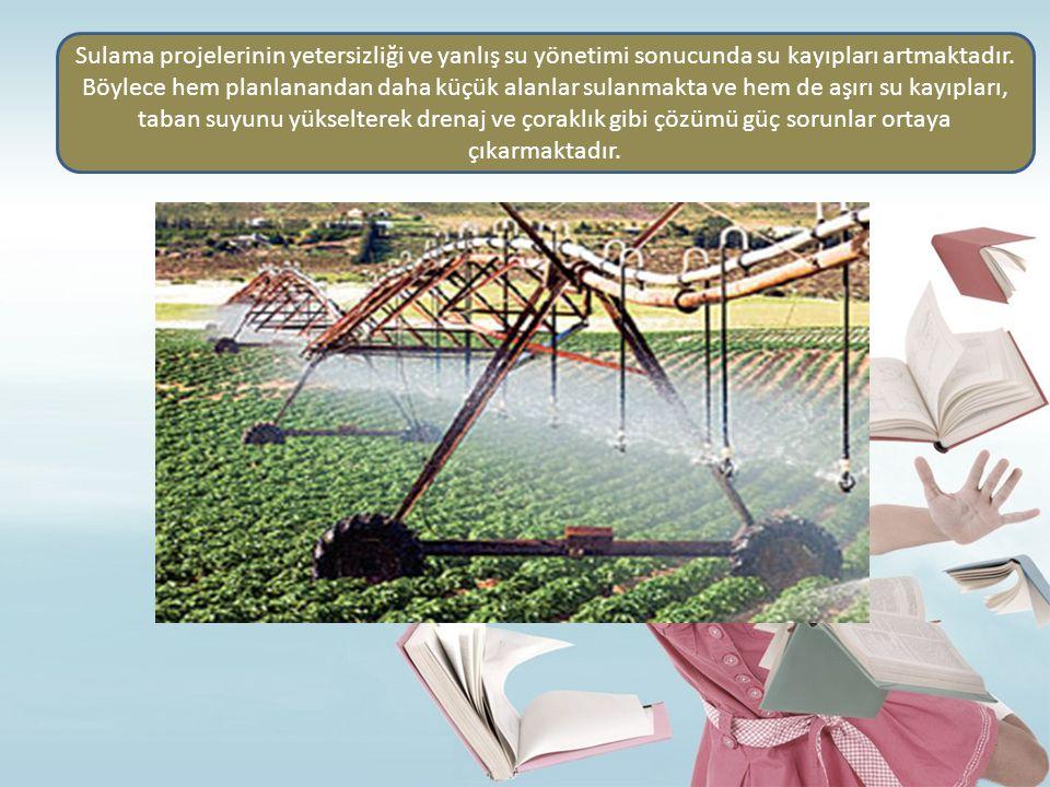 Sulama projelerinin yetersizliği ve yanlış su yönetimi sonucunda su kayıpları artmaktadır.