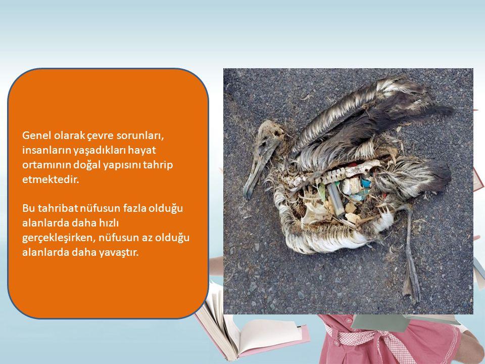 Genel olarak çevre sorunları, insanların yaşadıkları hayat ortamının doğal yapısını tahrip etmektedir.