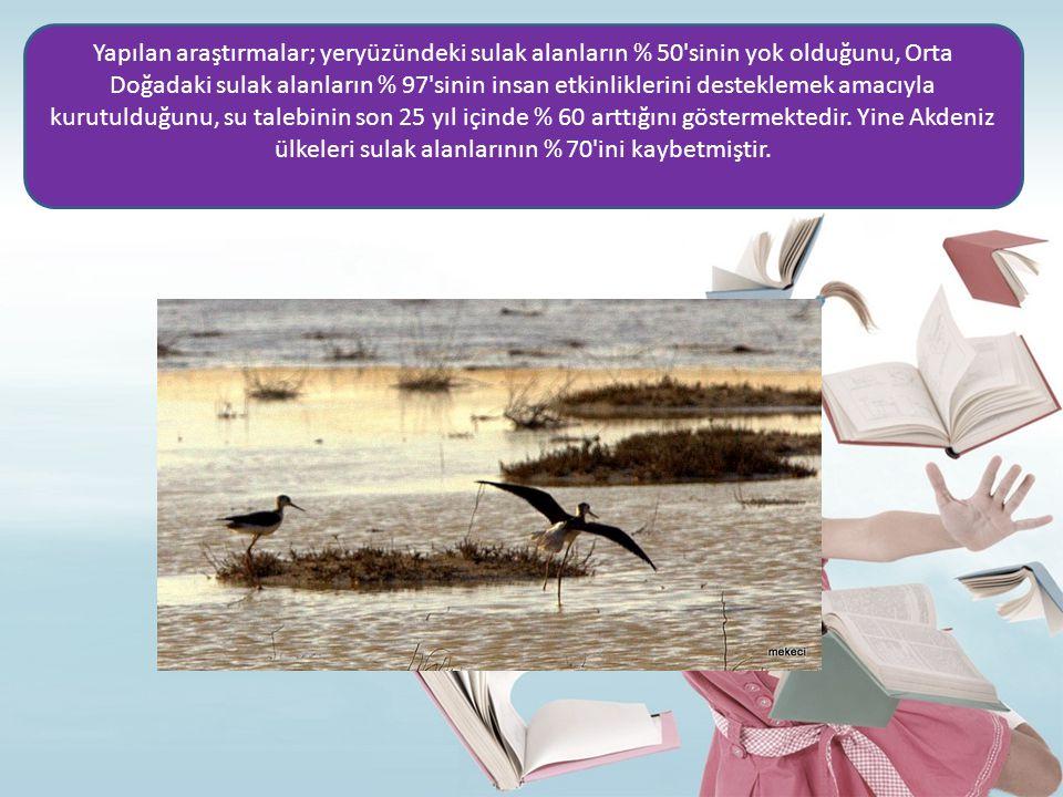 Yapılan araştırmalar; yeryüzündeki sulak alanların % 50 sinin yok olduğunu, Orta Doğadaki sulak alanların % 97 sinin insan etkinliklerini desteklemek amacıyla kurutulduğunu, su talebinin son 25 yıl içinde % 60 arttığını göstermektedir.