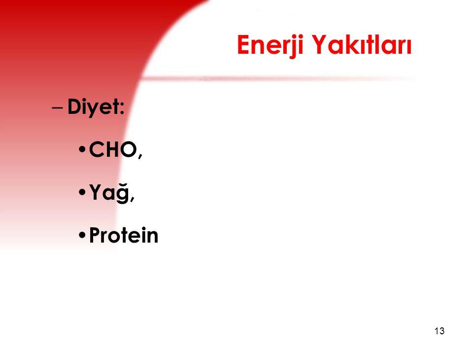 Enerji Yakıtları Diyet: CHO, Yağ, Protein