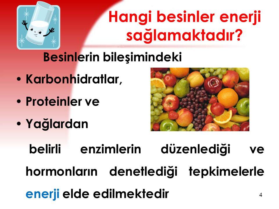 Hangi besinler enerji sağlamaktadır