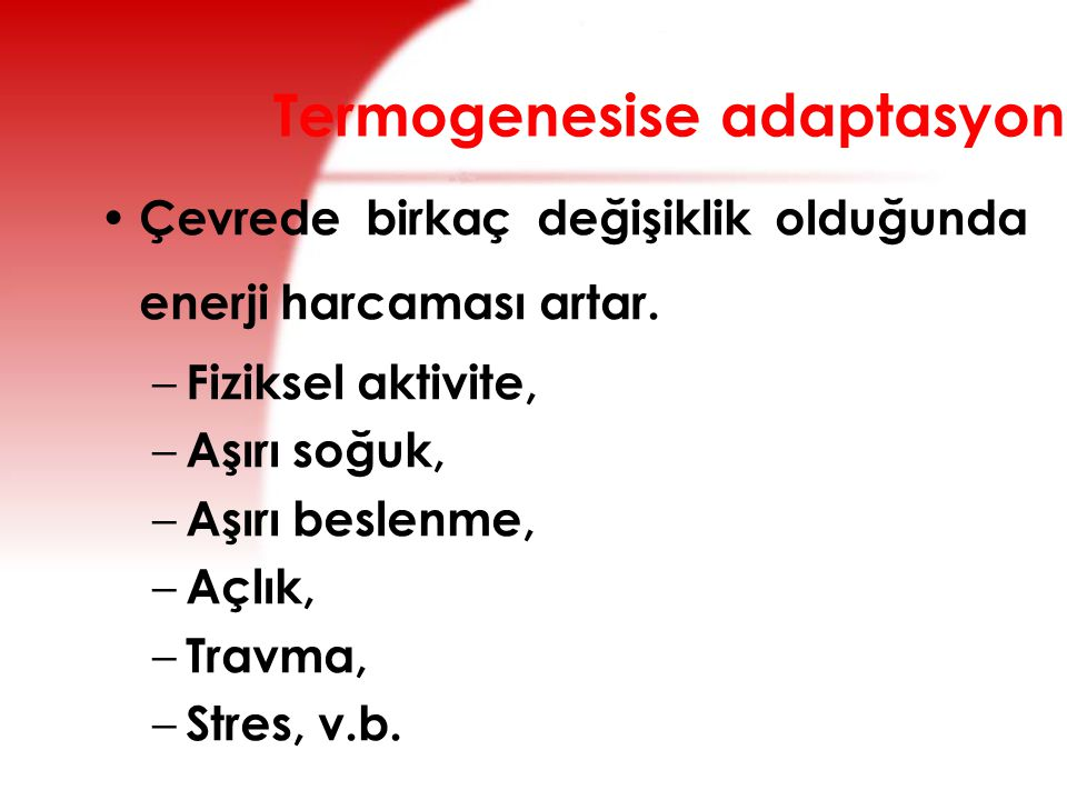 Termogenesise adaptasyon
