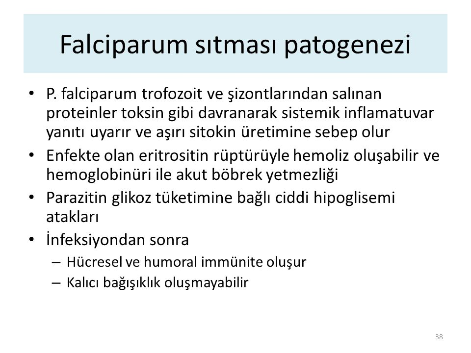 Falciparum sıtması patogenezi