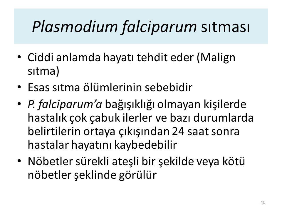 Plasmodium falciparum sıtması