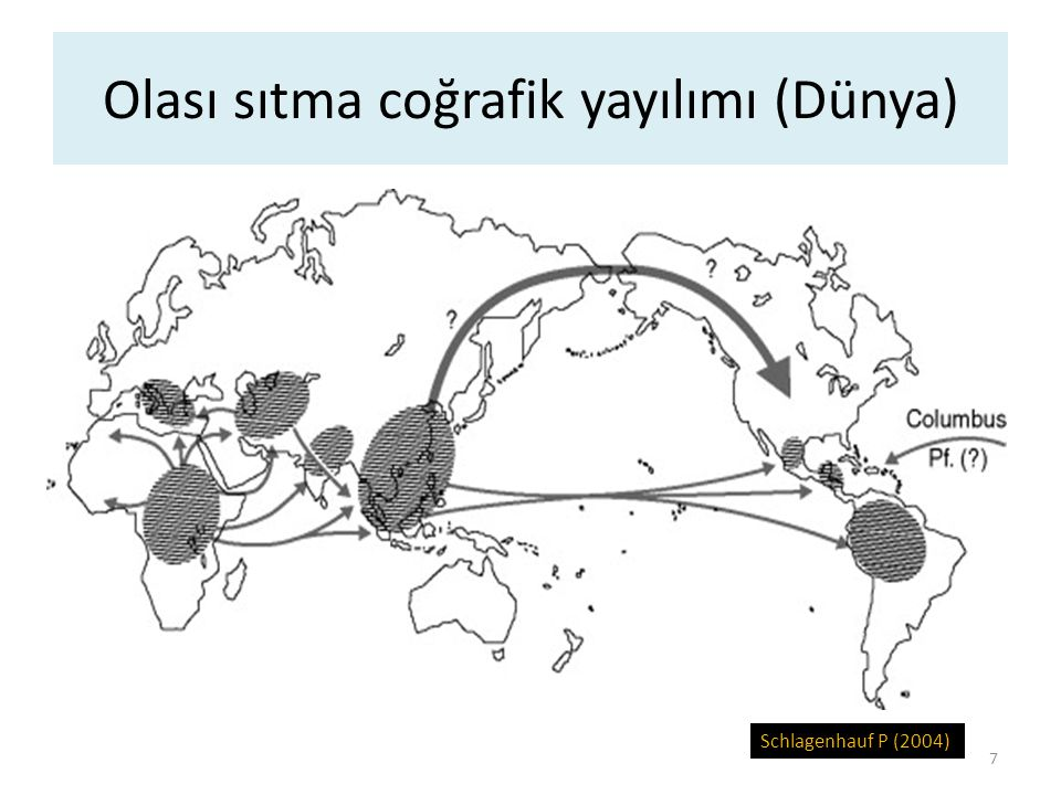Olası sıtma coğrafik yayılımı (Dünya)