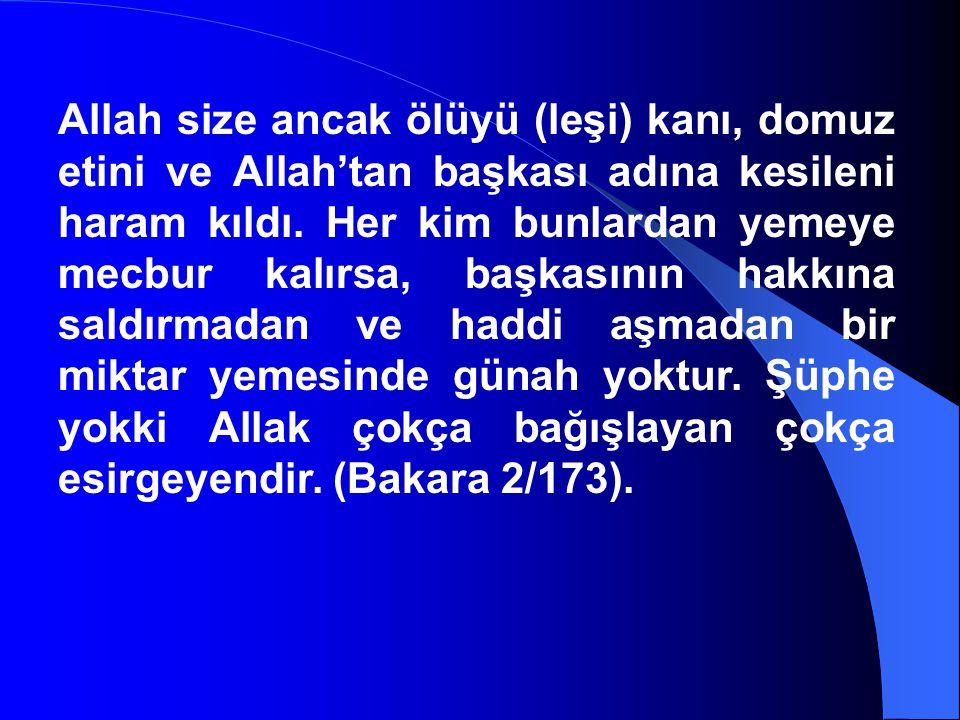 Allah size ancak ölüyü (leşi) kanı, domuz etini ve Allah'tan başkası adına kesileni haram kıldı.