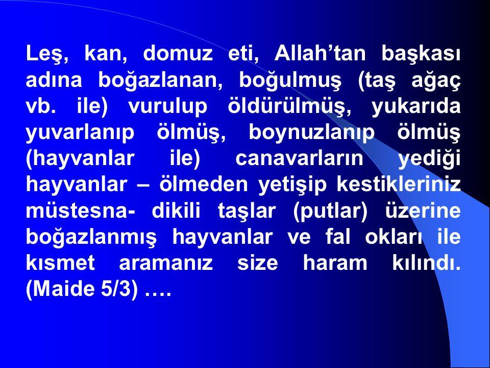 Leş, kan, domuz eti, Allah'tan başkası adına boğazlanan, boğulmuş (taş ağaç vb.