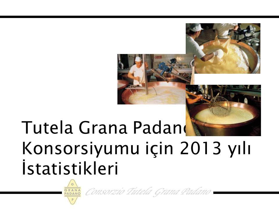 Tutela Grana Padano Konsorsiyumu için 2013 yılı İstatistikleri