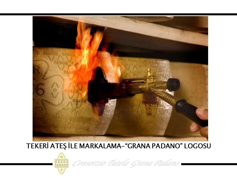 TEKERİ ATEŞ İLE MARKALAMA- GRANA PADANO LOGOSU