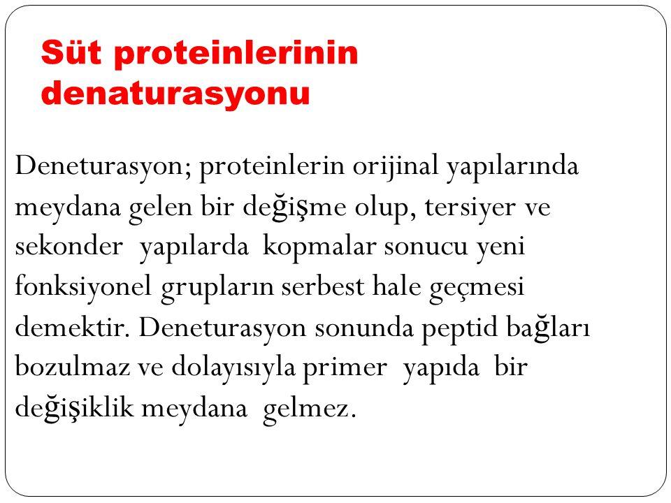 Süt proteinlerinin denaturasyonu