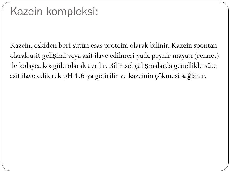 Kazein kompleksi: