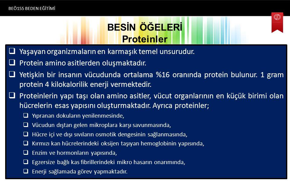 BESİN ÖĞELERİ Proteinler