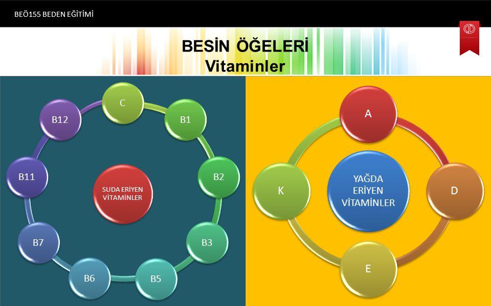 BESİN ÖĞELERİ Vitaminler