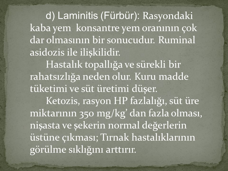 d) Laminitis (Fürbür): Rasyondaki kaba yem konsantre yem oranının çok dar olmasının bir sonucudur.
