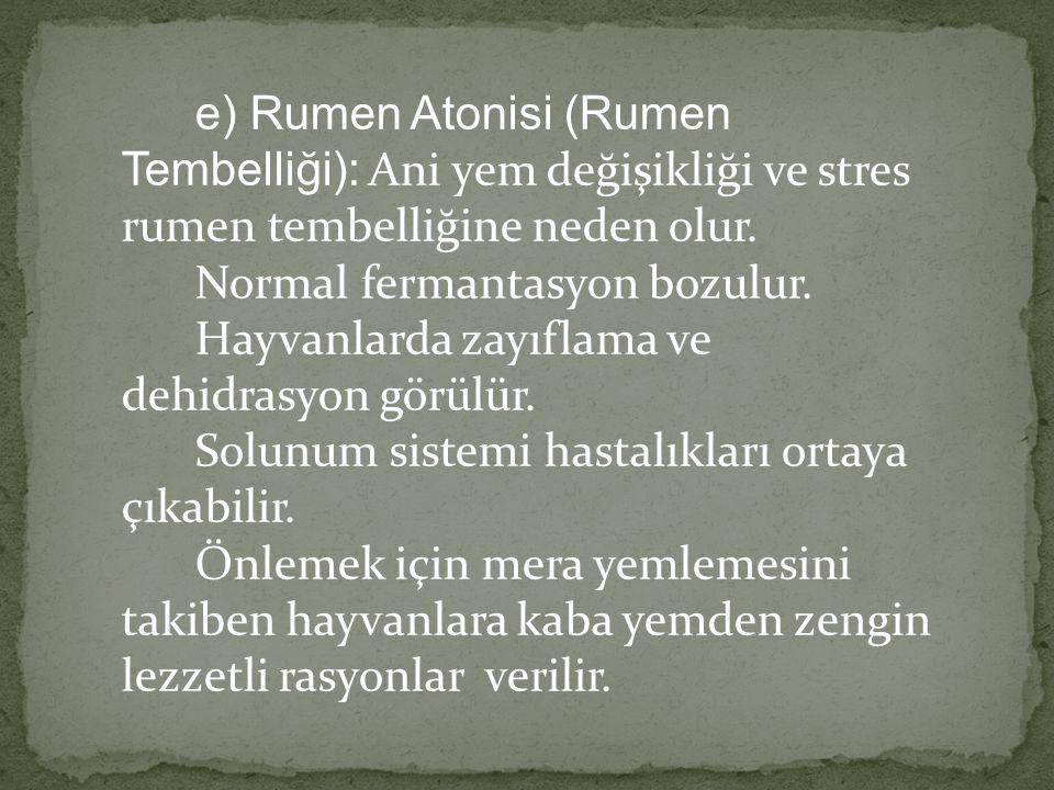 e) Rumen Atonisi (Rumen Tembelliği): Ani yem değişikliği ve stres rumen tembelliğine neden olur. Normal fermantasyon bozulur.