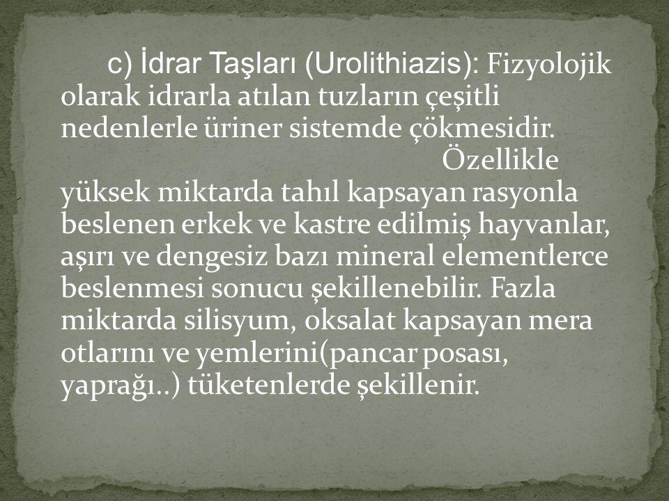 c) İdrar Taşları (Urolithiazis): Fizyolojik olarak idrarla atılan tuzların çeşitli nedenlerle üriner sistemde çökmesidir.