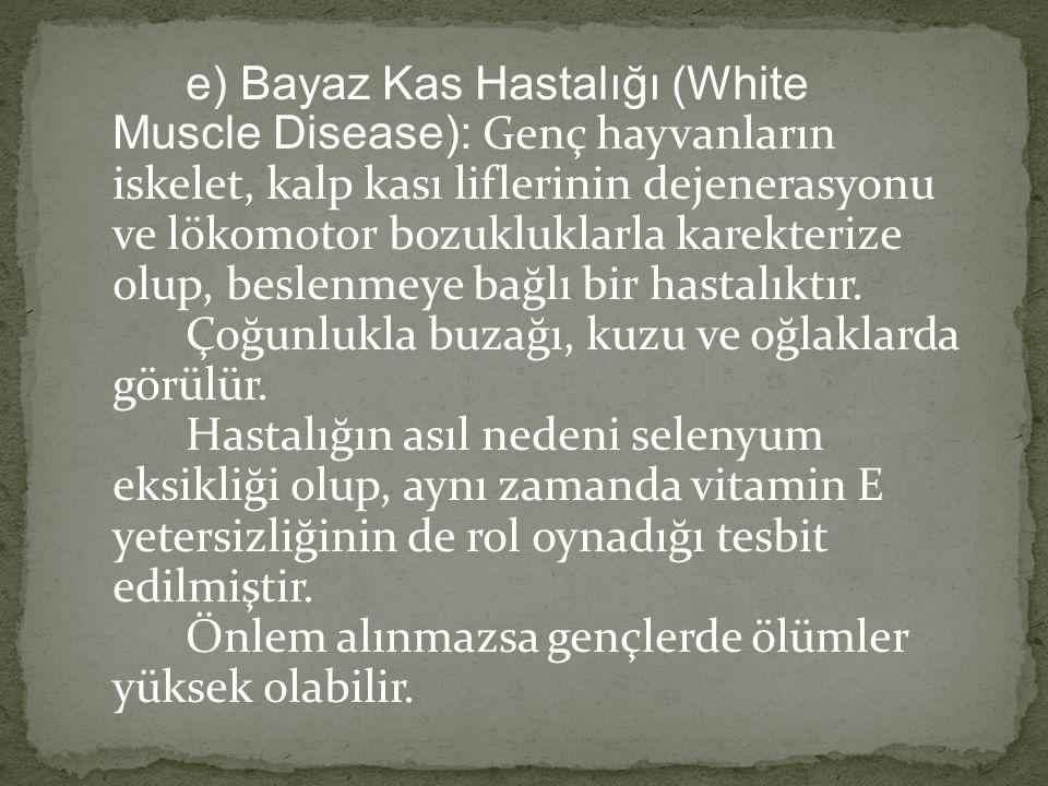 e) Bayaz Kas Hastalığı (White Muscle Disease): Genç hayvanların iskelet, kalp kası liflerinin dejenerasyonu ve lökomotor bozukluklarla karekterize olup, beslenmeye bağlı bir hastalıktır. Çoğunlukla buzağı, kuzu ve oğlaklarda görülür. Hastalığın asıl nedeni selenyum eksikliği olup, aynı zamanda vitamin E yetersizliğinin de rol oynadığı tesbit edilmiştir. Önlem alınmazsa gençlerde ölümler yüksek olabilir.