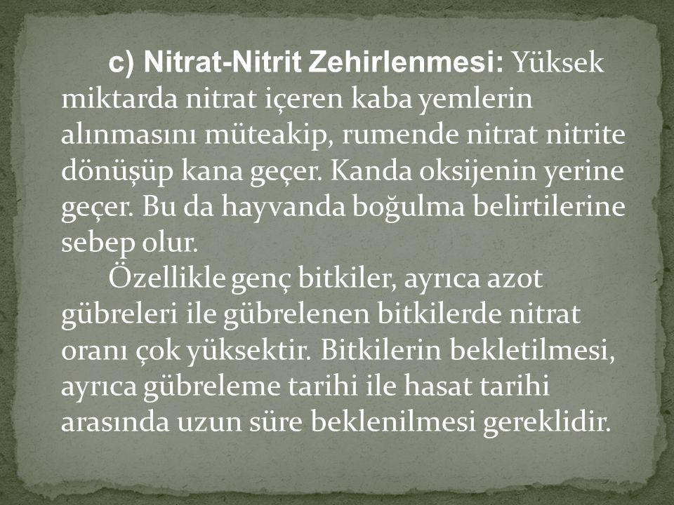 c) Nitrat-Nitrit Zehirlenmesi: Yüksek miktarda nitrat içeren kaba yemlerin alınmasını müteakip, rumende nitrat nitrite dönüşüp kana geçer.