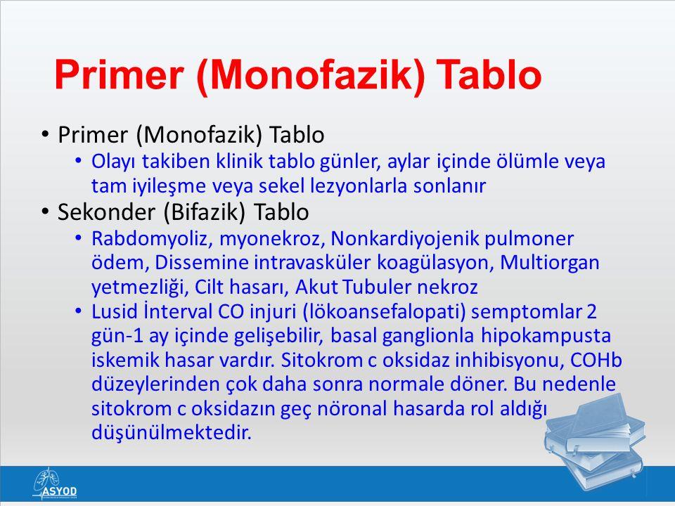 Primer (Monofazik) Tablo
