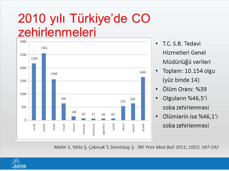 2010 yılı Türkiye'de CO zehirlenmeleri