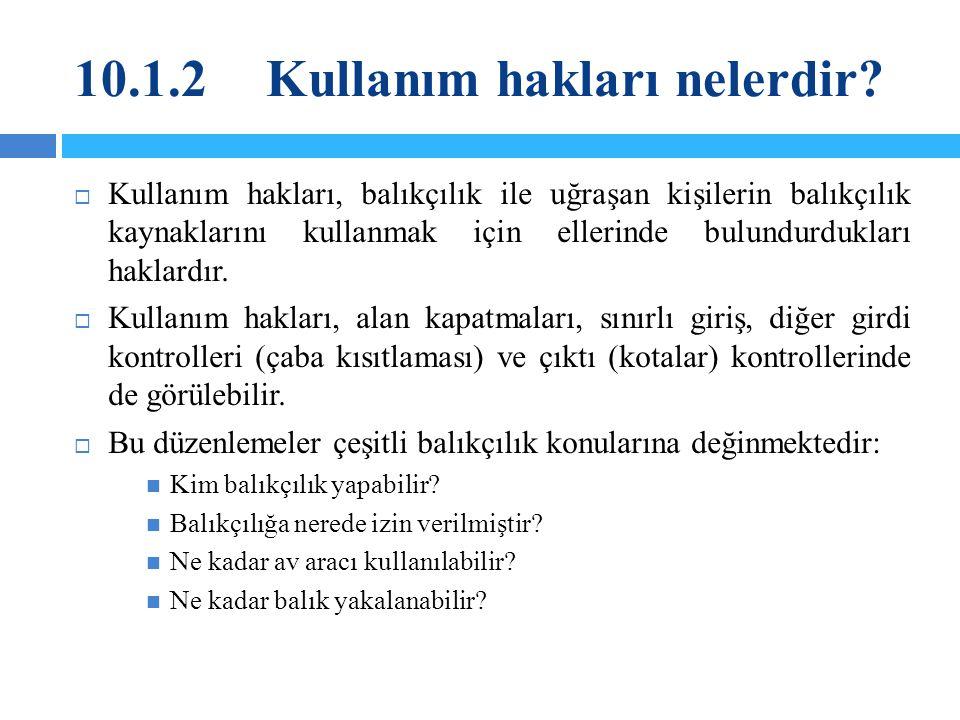 10.1.2 Kullanım hakları nelerdir