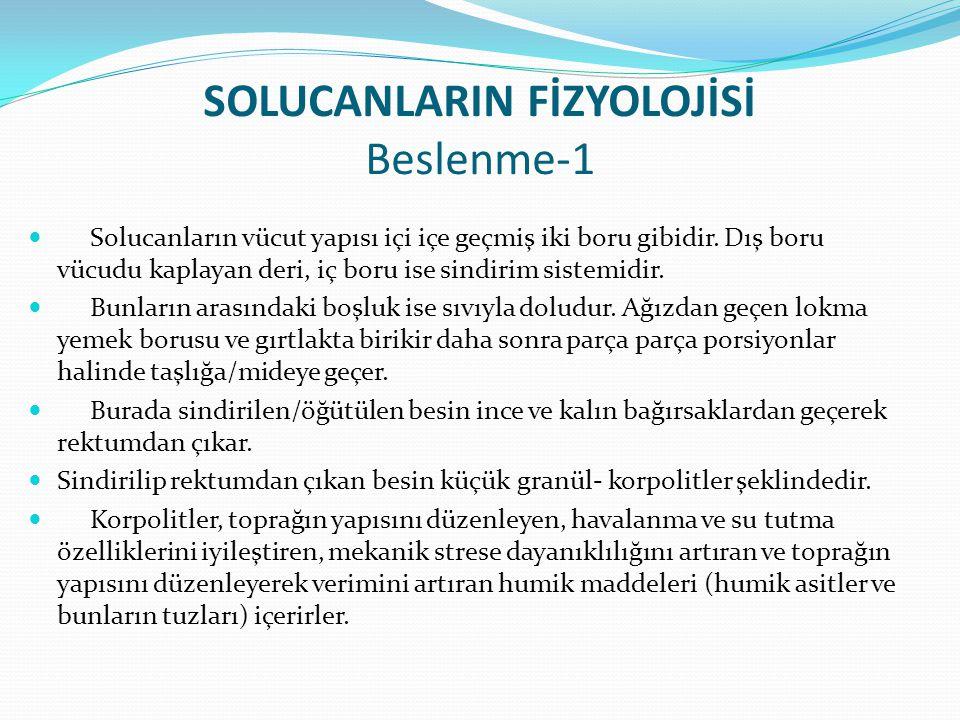 SOLUCANLARIN FİZYOLOJİSİ Beslenme-1