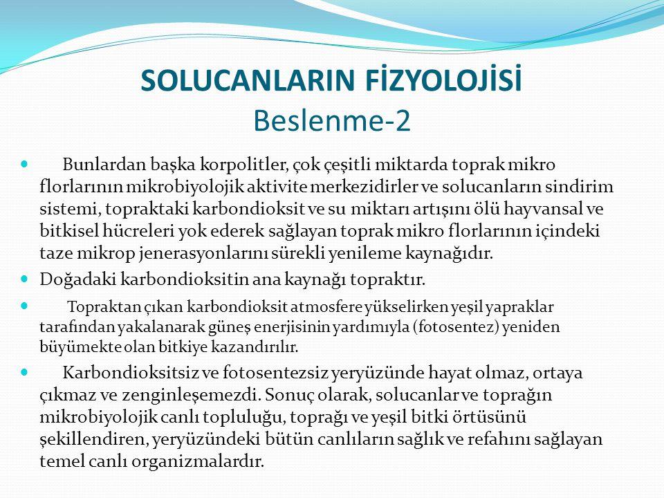 SOLUCANLARIN FİZYOLOJİSİ Beslenme-2
