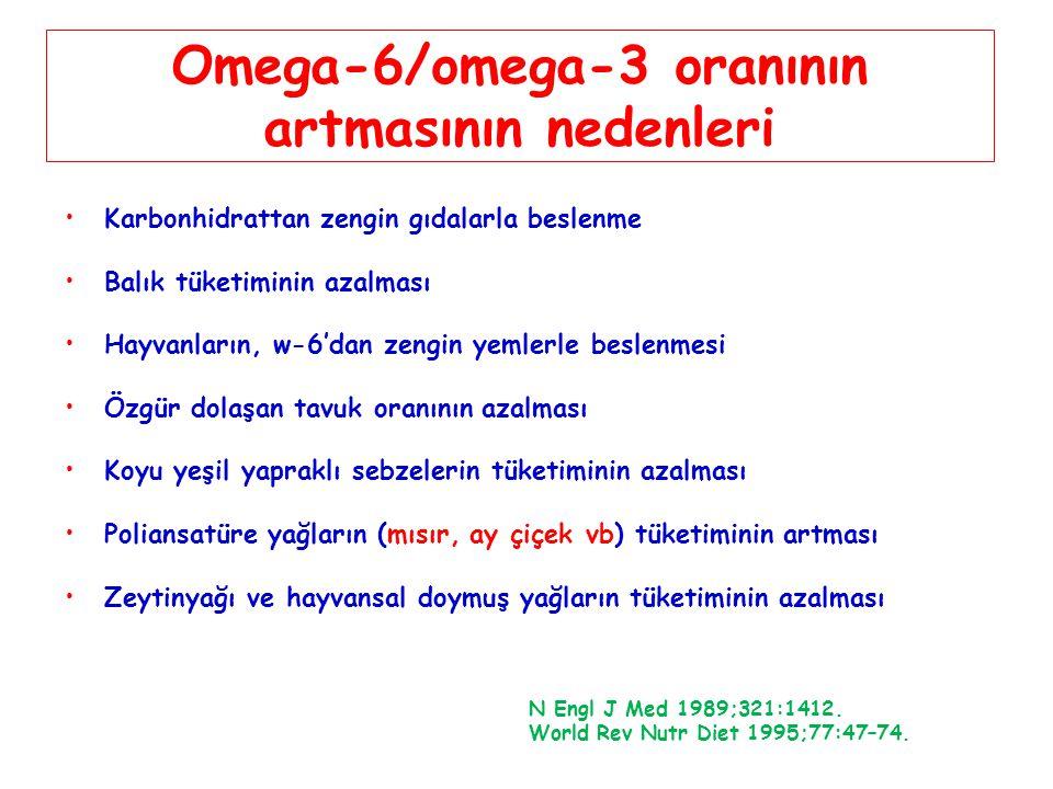 Omega-6/omega-3 oranının artmasının nedenleri