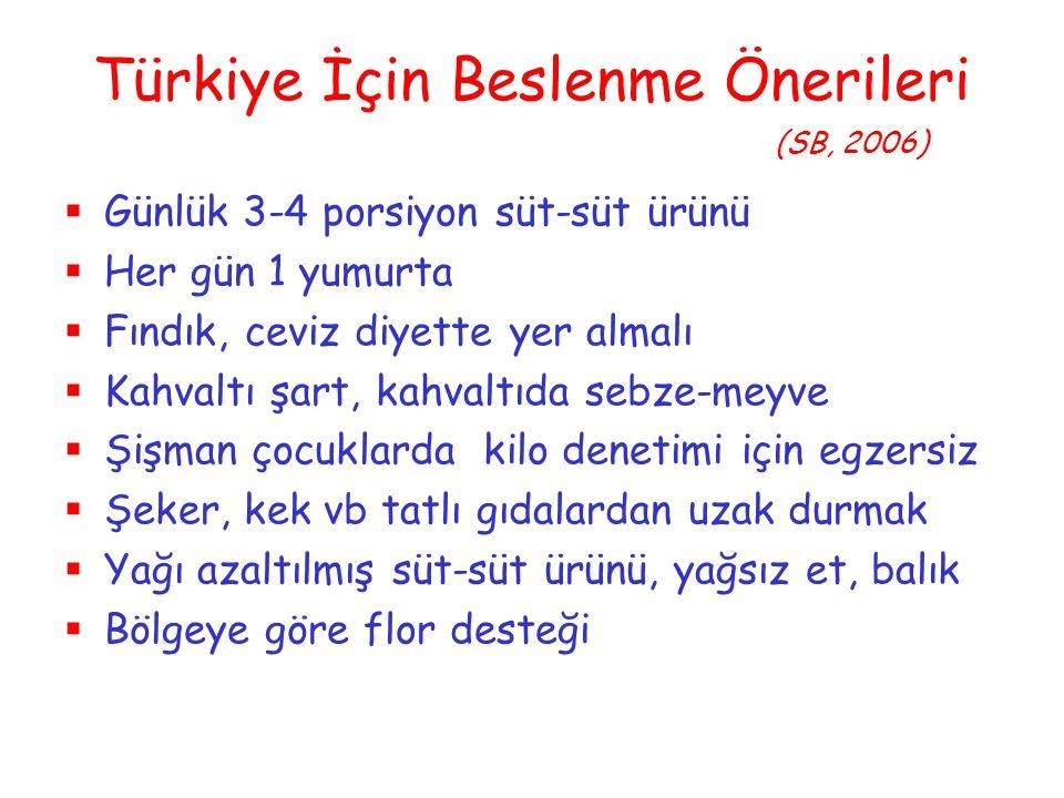 Türkiye İçin Beslenme Önerileri (SB, 2006)