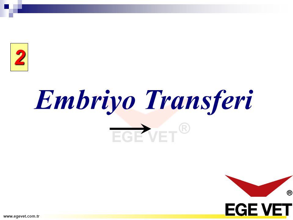 2 Embriyo Transferi www.egevet.com.tr
