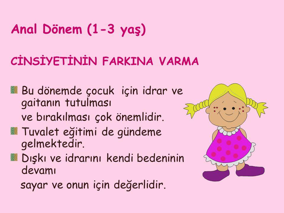 Anal Dönem (1-3 yaş) CİNSİYETİNİN FARKINA VARMA