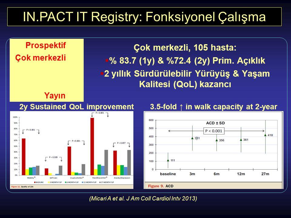 IN.PACT IT Registry: Fonksiyonel Çalışma