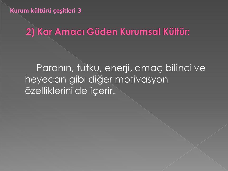 2) Kar Amacı Güden Kurumsal Kültür: