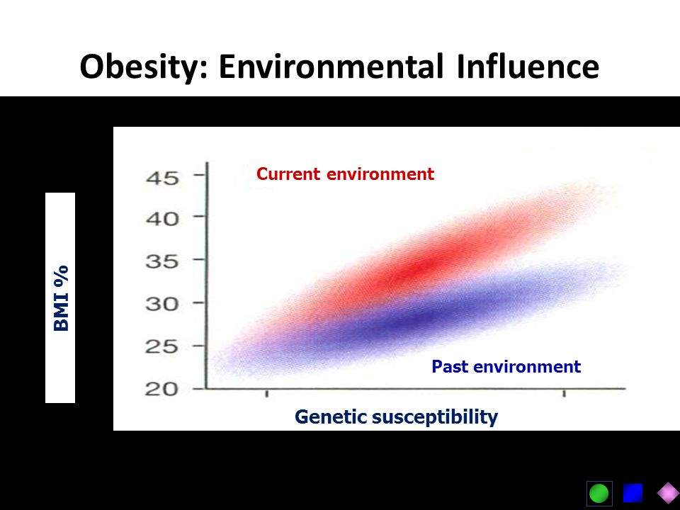 Obesity: Environmental Influence