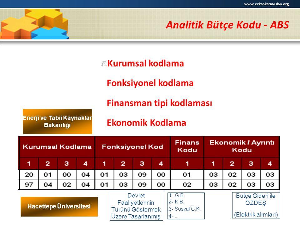 Analitik Bütçe Kodu - ABS