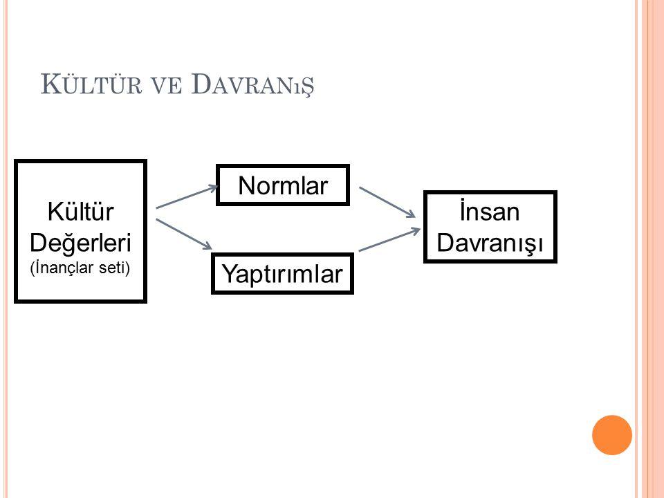 Kültür ve Davranış Normlar Kültür Değerleri İnsan Davranışı